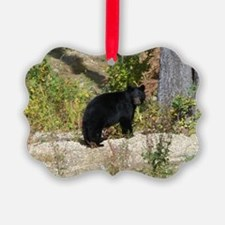 Autumn Bear Daze #2 Ornament