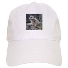 lovely meerkat Baseball Cap