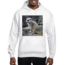 lovely meerkat Hoodie