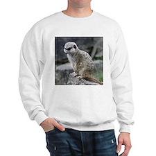 lovely meerkat Jumper