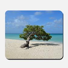 Aruba Divi Divi Tree Mousepad