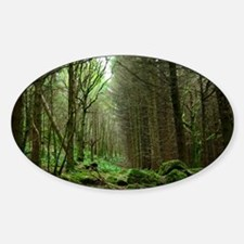 Dunvegan Forest Decal