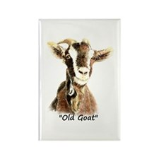 Old Goat Fun Quote For Him Magnets