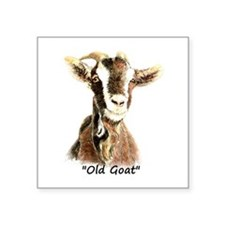 Old Goat Fun Quote for Him Sticker