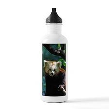 Sweet Red Panda Bear Water Bottle