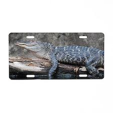 Alligator  Aluminum License Plate