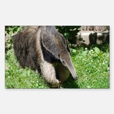 Giant Anteater Sticker (Rectangle)