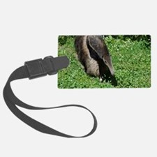 Anteater Luggage Tag