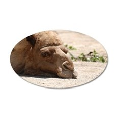 Cute Camel Wall Decal
