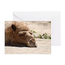 Cute Camel Greeting Card