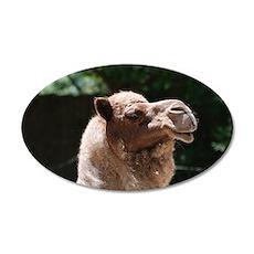 Arab Camel Wall Decal