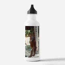 Orang Utan 025 Water Bottle