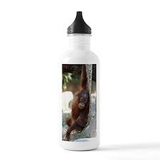 Orang Utan 027 Water Bottle