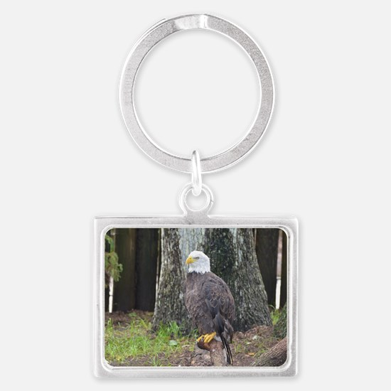 Bald Eagle Perched on a Fallen  Landscape Keychain