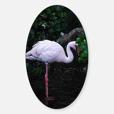 Tropical Flamingo Sticker (Oval)