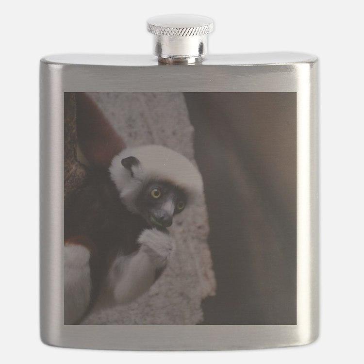 Adorable Safika Lemur Flask