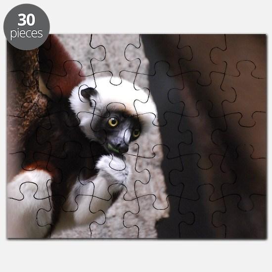 Adorable Safika Lemur Puzzle