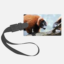 Cute Red Ruffed Lemur Luggage Tag
