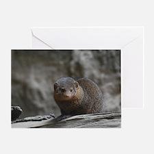 Cute Dwarf Mongoose Greeting Card
