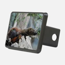 Ringtailed Mongoose Hitch Cover