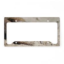 Cute Dwarf Mongoose License Plate Holder