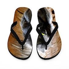 Ebony Langur Monkey Flip Flops