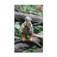 Mother an Baby Squirrel Monke Rectangle Car Magnet