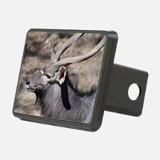 Nyala with Horns Hitch Cover