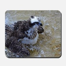 Bathing Osprey Bird Mousepad