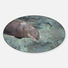 River Otter Swimming Decal