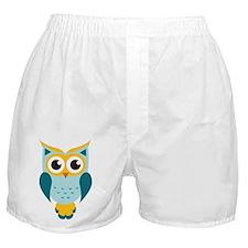 Teal Owl Boxer Shorts