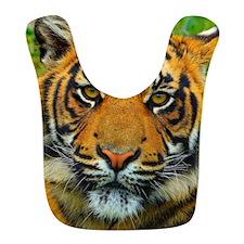 The Last Tiger? Bib