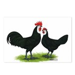 Whitefaced Spanish Chickens Postcards (Package of