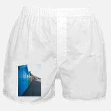 Row of brightly coloured beach huts Boxer Shorts
