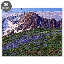 North Cascades, Washington Puzzle