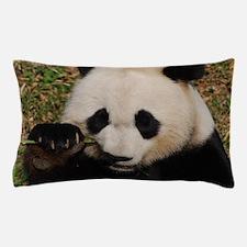 Panda Snacking Pillow Case