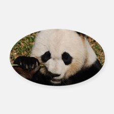 Panda Snacking Oval Car Magnet