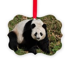 Awkward Sitting Panda Bear Ornament