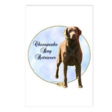 Chessie Portrait Postcards (Package of 8)