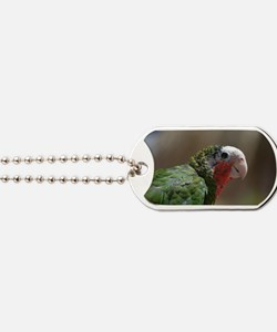 Conure BIrd with a Red Throat Dog Tags