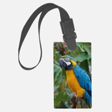 Blue an Gold Macaw on a Branch Luggage Tag