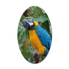 Blue an Gold Macaw on a Bran Wall Decal