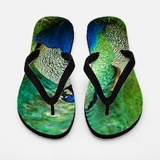 Pretty Peacock Flip Flops