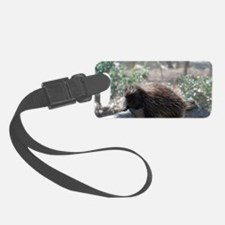 Sleeping Porcupine Luggage Tag