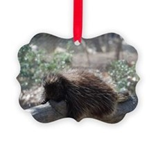 Sleeping Porcupine Ornament