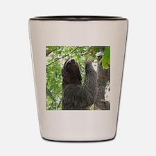 Tree Climbing Sloth Shot Glass