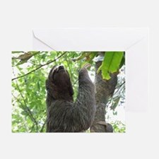 Tree Climbing Sloth Greeting Card