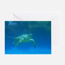 Great Swimming Sea Turtle Greeting Card