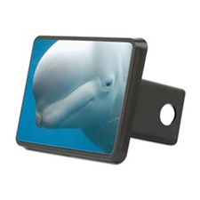 Beluga Whale Hitch Cover