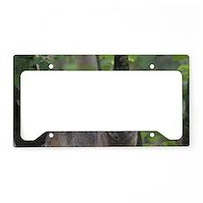 Wild Timber Wolf License Plate Holder
